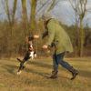 Apportiertasche im Einsatz - Hundeschule Spiering