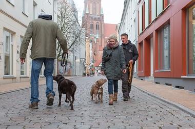 Einzeltraining - Hundeschule Spiering