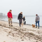 Intensivtraining für Hunde - Hundeschule Spiering