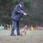 Partnerzirkel - Hundetraining in Wismar - Hundeschule Spiering