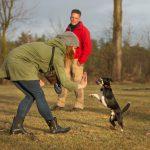 Trickdog - Hundeschule Spiering Bad Kleinen