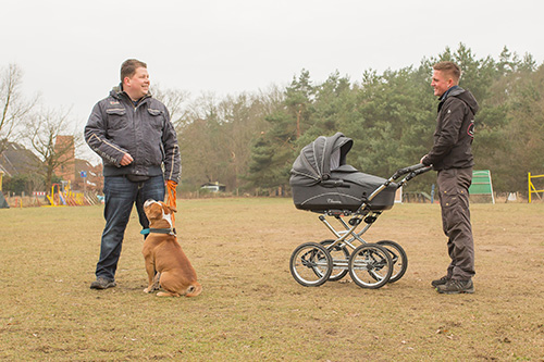 Wesenstest - Hundeschule - Hundetrainer