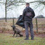 Wesenstest / Training in der Hundeschule Spiering