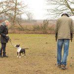 Wesenstest in der Hundeschule Spiering
