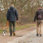 Alltagstraining wie z.B. Freilauf & Zurückkommen - Hundeschule Spiering