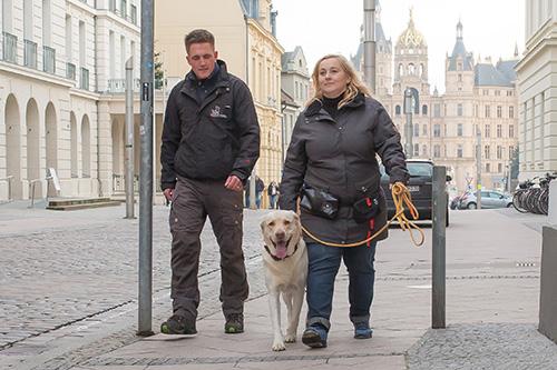 Alltagstraining für Hunde - Hundesschule Spiering