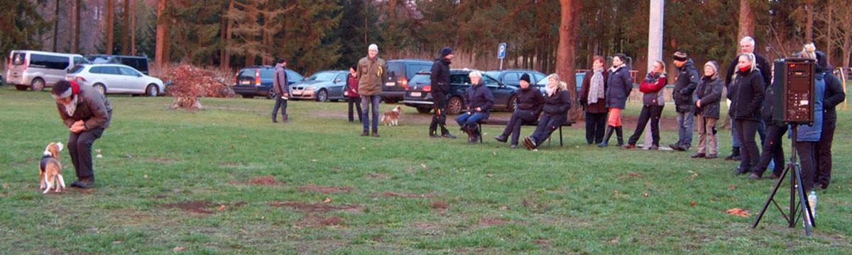 Seminare und Workshops in der Hundeschule Spiering