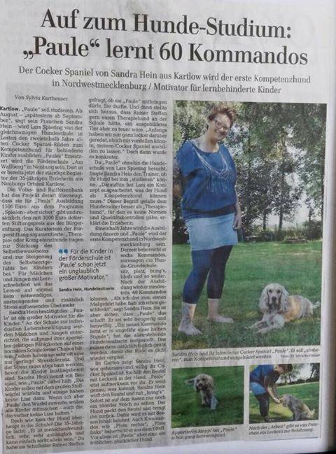 Hundestudium - Hundeschule Spiering