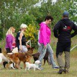 Praxiskurs im Frühjahr 2015 - Hundeschule Spiering