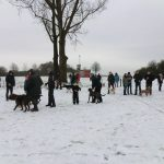 Spaziergang ins neue Jahr mit der Hundeschule SPiering
