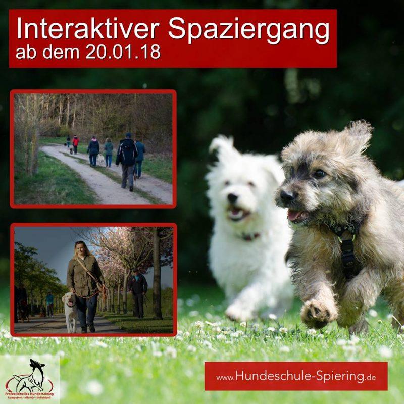 Interaktiver Spaziergang