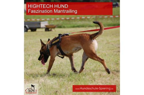 Hightech Hund